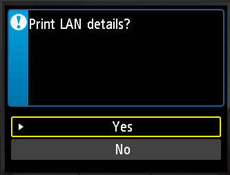 Print LAN details? Yes selected to confirm