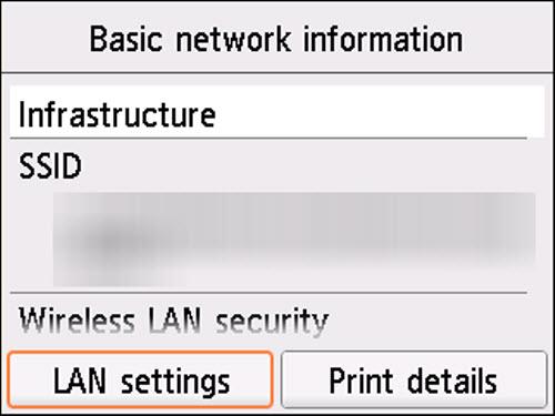 Basic network information screen: Select LAN settings