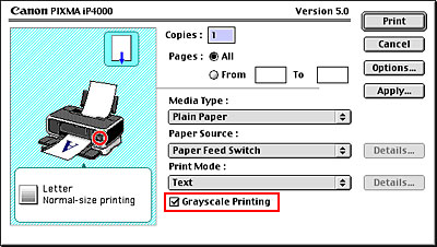 Check The Grayscale Printing Checkbox