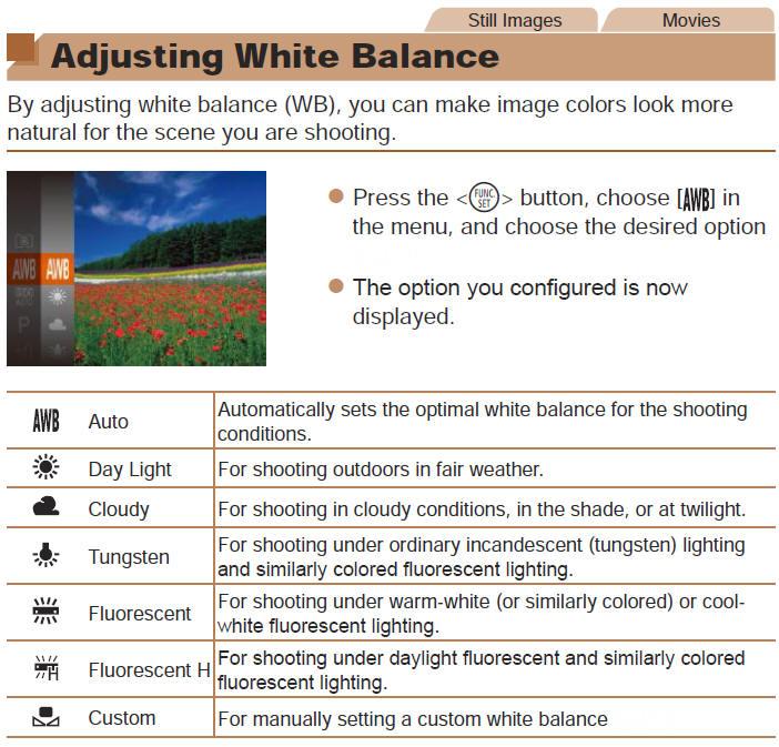 how to use custom white balance